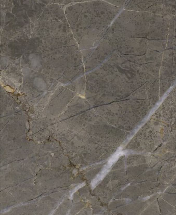 IntNow_marble selection_Collemandina