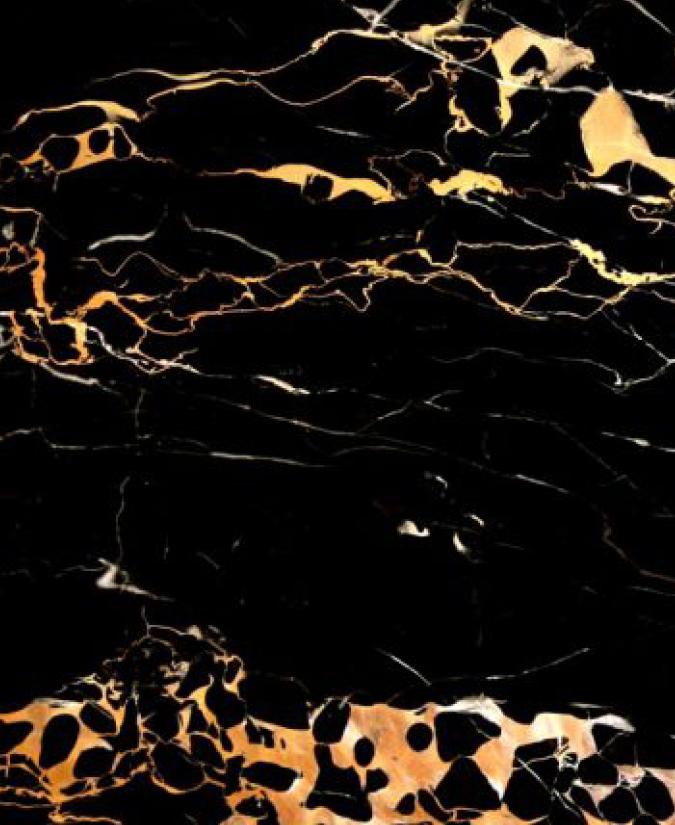 IntNow_marble selection_Porto Oro