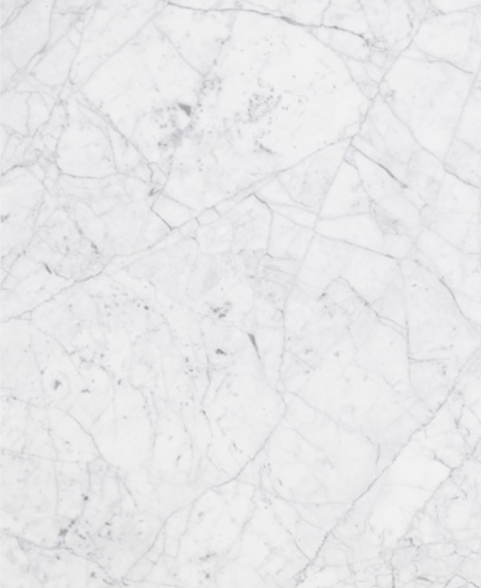 IntNow_marble selection_Statuarietto